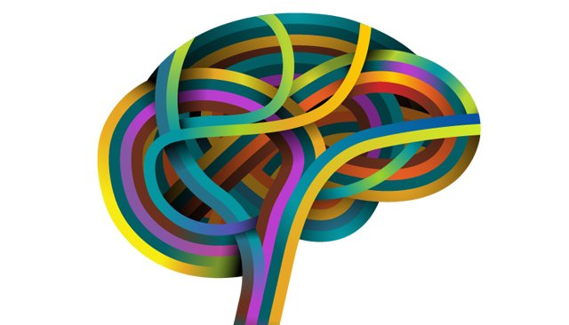 What Happens in the Brain When Students Collaborate?