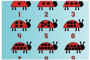 Numbers: Ladybug Lesson Plan