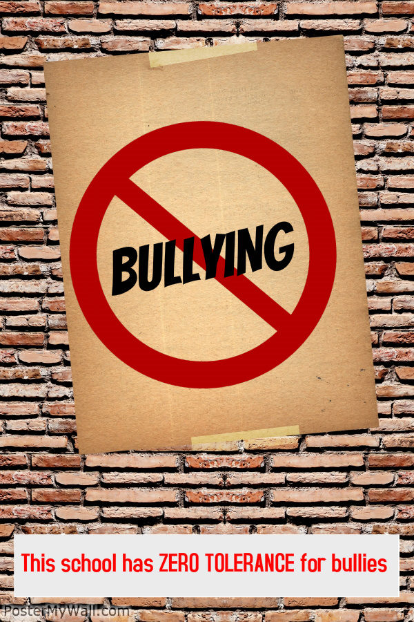 School Environment & Culture and Bullying Prevention