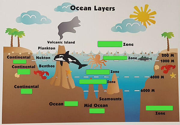 VariQuest Perfecta Scan Ocean Layers Answers Covered