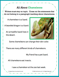 all about chameleons with image.png