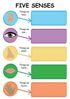 5 Senses CPM.jpg