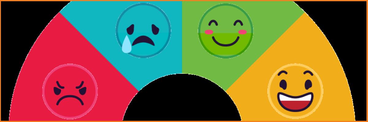 variquest emotion meter